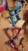 Halsband2
